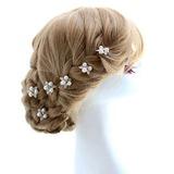 Bonito Liga Grampos de cabelo (042051825)
