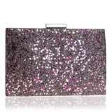 Delicate PVC Clutches/Minaudiere (012200366)