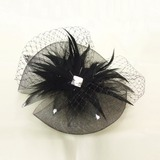 Netto garen/Feather Fascinators met Strass (042026154)