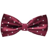 Dot Polyester Bow Tie (200182465)