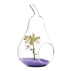 päronformad Glas Vas (128048470)